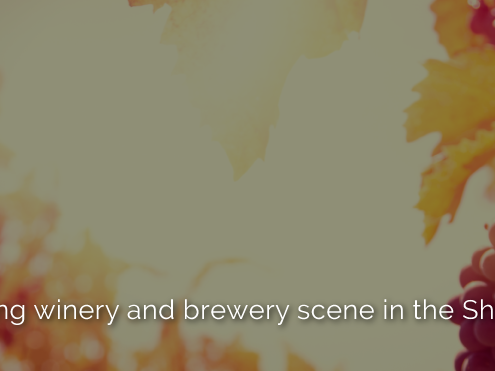 Explore the thriving winery and brewery scene in the Shenandoah Valley