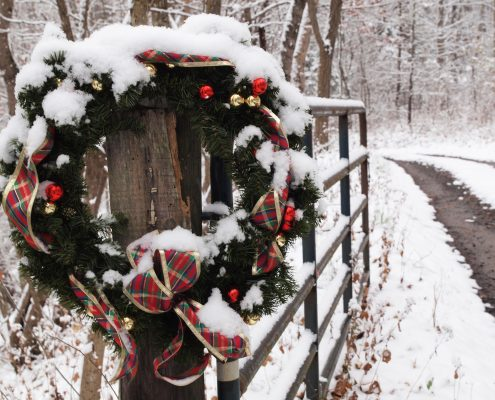 December by Kathy Rauschelbach