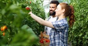 Greenhouse hobby farm