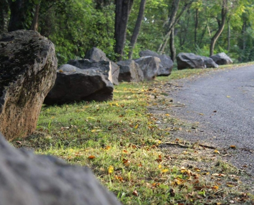 Mountain road with trees and boulders